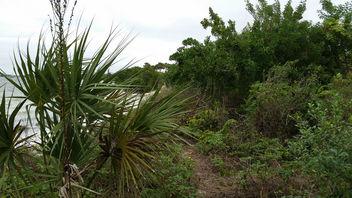 Sandy Path - image gratuit #347857