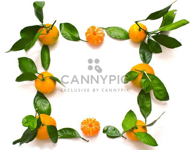 Fresh tangerines with green leaves - image #347977 gratis