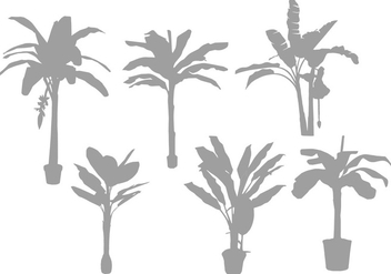 Banana Tree Silhouette Vectors - бесплатный vector #350167