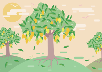 Mango Tree Vector - бесплатный vector #355997