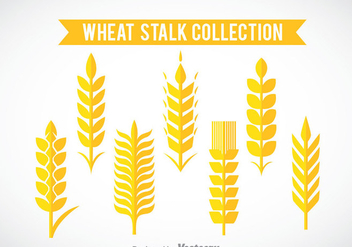 Wheat Stalk Collection Vector - vector gratuit #363847