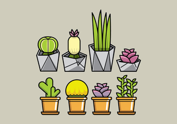 Vector Succulent Planters - Free vector #364987