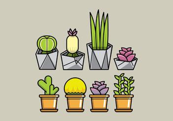 Vector Succulent Planters - vector #364987 gratis