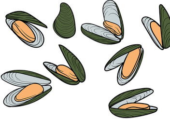 Free Mussel Vector - Free vector #365747