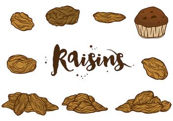 Raisins Vectors - vector gratuit #368307