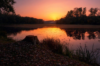 Sunset - Kostenloses image #369497