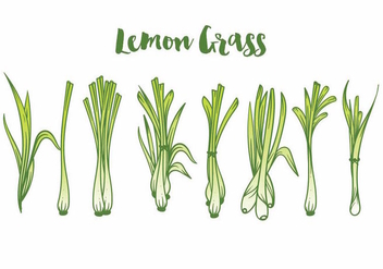 Lemon Grass Icon Set - vector gratuit(e) #370107
