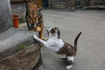 Sara, (perra) y Lucas. - Free image #372027