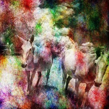 rainbow mules - Free image #372727