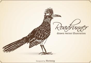 Free Vector Drawn Roadrunner Illustration - Kostenloses vector #372917
