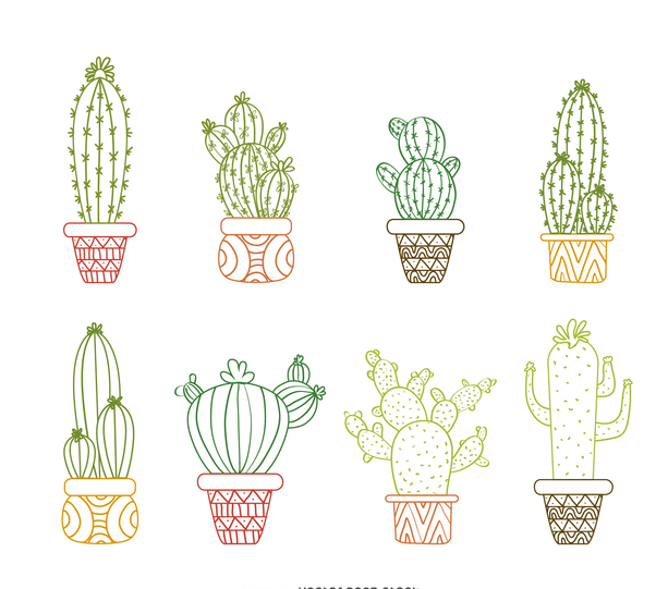 Cactus outline drawings set - vector gratuit #373077