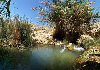 En Prat (En Fara) Nature Reserve - Free image #379937