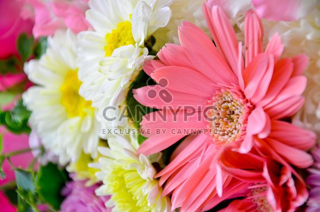 Flores # naturaleza # fresco # hermoso # colores # decoraciones - image #380487 gratis