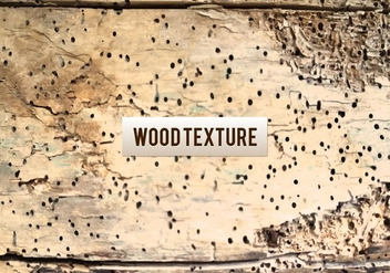 Free Vector Wood Texture - Free vector #383927