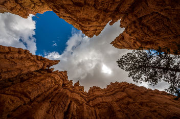 bryce canyon (USA) - Free image #384207