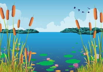 Cattails Vector And Water Lilies At The Beautiful Lake - бесплатный vector #386387