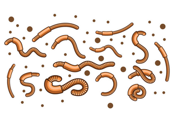 Free Earth Worm Illustration Vector - Free vector #386837