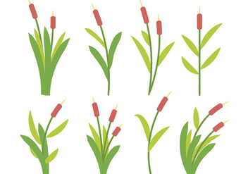 Free Cattails Icon Vector - Free vector #389307