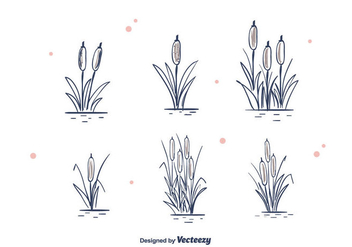 Hand Drawn Cattails Vector - Kostenloses vector #391667