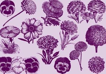 Vintage Flowers - vector gratuit #391907