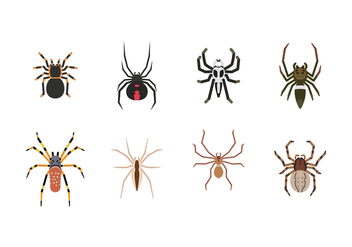 Free Spider Vector - Free vector #392277