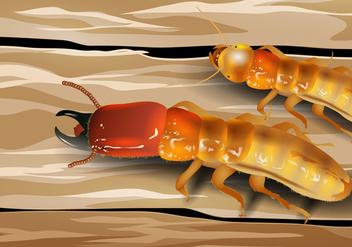 Soldier Termite - vector gratuit #397107