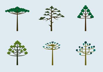 Araucaria trees vector flat - Free vector #397187
