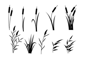 Free Reeds Vector - Free vector #404037