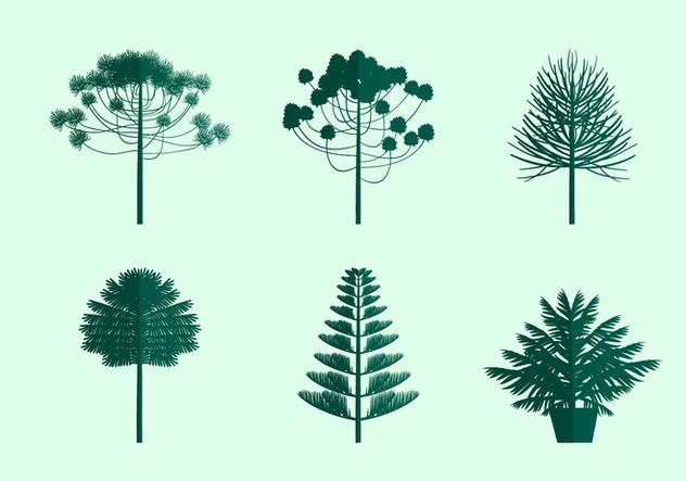 Araucaria Icon Free Vector - Free vector #404477