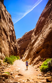 Hiking Capitol Gorge - Free image #406207