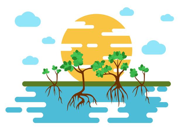 Free Mangrove Trees Illustration Vector - Free vector #407557