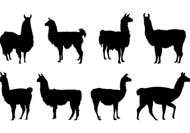 Set Of Llama Silhouettes - vector #407827 gratis