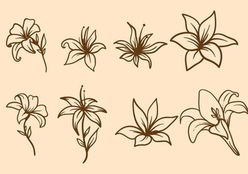 Free Easter Lily Vector - vector #412097 gratis