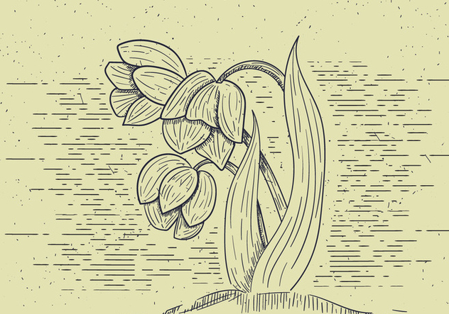 Free Detailed Vector Flower Illutration - Free vector #412557