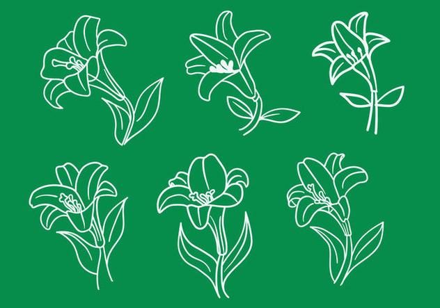 Easter Lily Vectors - Free vector #413357