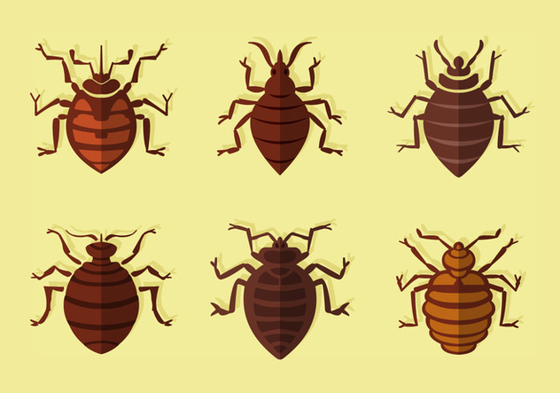 Bed bug flat vector - Free vector #414107
