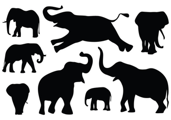 Elephant Silhouette Vectors - Kostenloses vector #419397