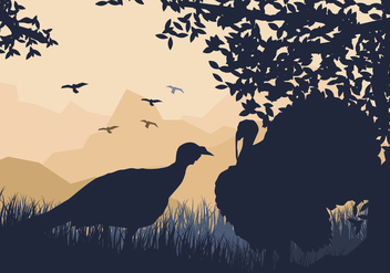Couple Of Wild Turkey Look For Something To Eat - vector #419807 gratis