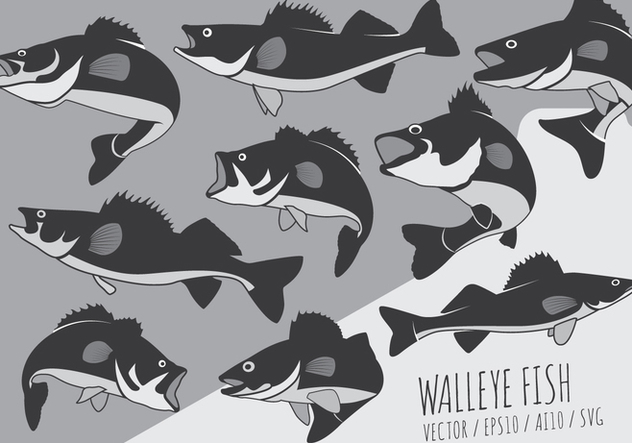 Fish Perch and Walleye Vectors - Free vector #420687