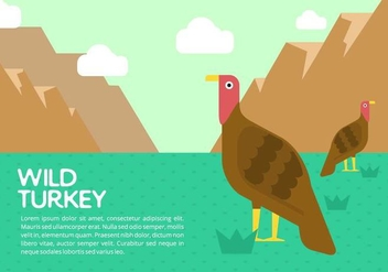Wild Turkey Background - vector #421557 gratis