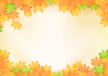 Orange Fall Maple Leaves Vector - vector gratuit #426467