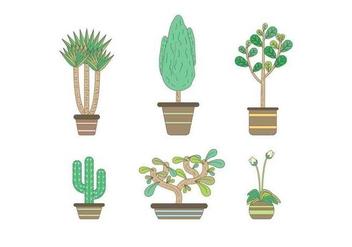 Free Evergreen Houseplant Vectors - Free vector #427077