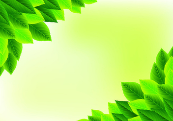 Background Of Natural Green Leaves - Free vector #427617
