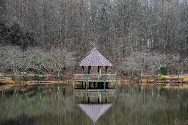 Nature's Mirror - image #427857 gratis