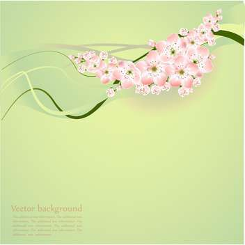 Spring background with beautiful spring flowers - vector gratuit #127117