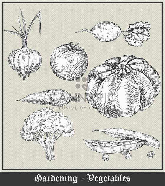 gardening banner with vegetables and fruits - Free vector #135077