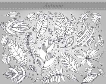 vector set of autumn leaves illustration - Free vector #135237