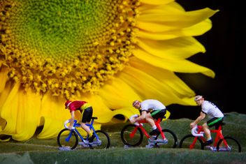Miniature cyclists on green leaf and sunflower - image gratuit #136367