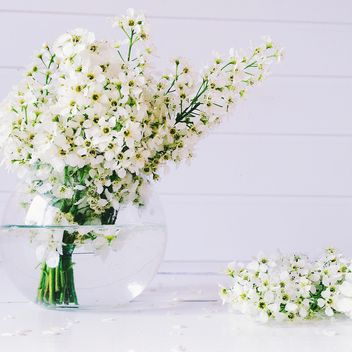 White lowers in vase - image #136557 gratis