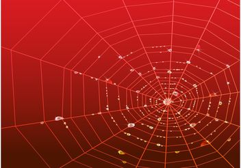 Web With Drops - Free vector #141627